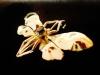 Pendentif papillon